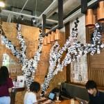 何時間でもまったり出来る!!【Bicester Cafe】〜爆速Wi-Fi!セブで見つけたお洒落カフェ〜