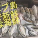 南国セブ!海といったら新鮮な海鮮料理!?