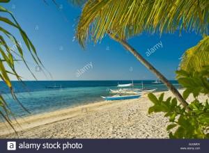 beach-malapascua-island-cebu-philippines-visayan-sea-sun-sunny-tropical-BJGM0X