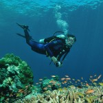 TOP 10 THINGS TO DO IN CEBU