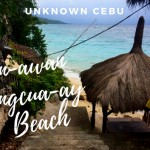 Unknown Cebu: your personal beach for the day