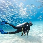 AMAZING DIVING EXPERIENCE!!!