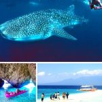 8 good places to travel in Cebu, Philippines.